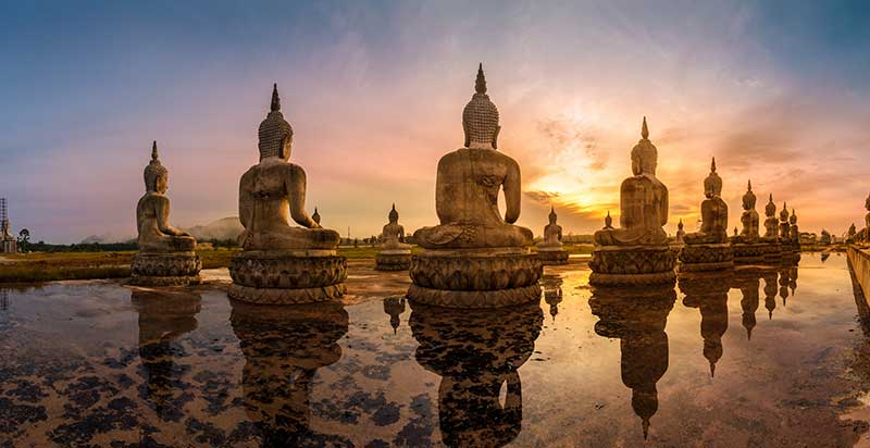 The Four Noble Truths of Buddhism: